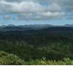 Aberdare Mountain Range