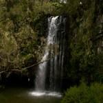 Aberdare waterfall