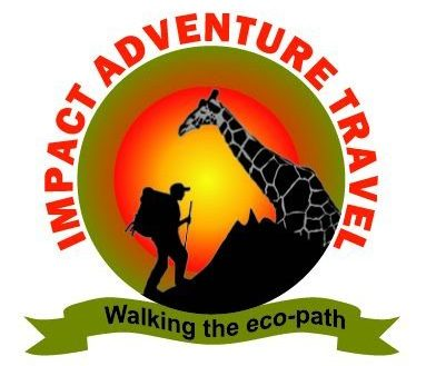 Kenya Safaris with Impact Adventure Travel