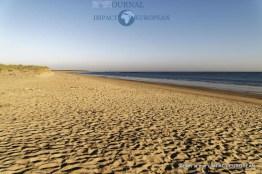 La Faute sur mer après réouverture des plages