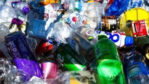 discarded plastic bottles