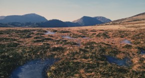 Photograph of a vast expanse of blanket bog with hills in the background