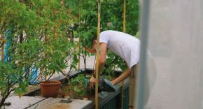 Man watering a planter on an Urban Farm