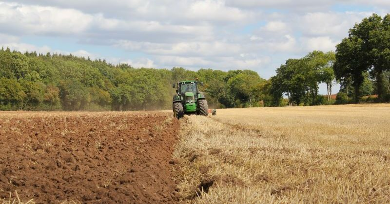 A green tractor farming a field of wheat