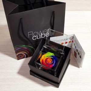 Flower cube rainbow medio 8x8