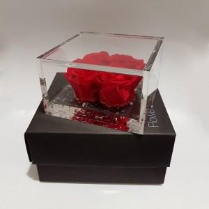 Flower cube 4 rose