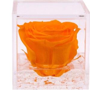 FlowerCube con rosa arancio