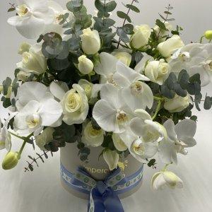 Box/scatola con fiori bianchi
