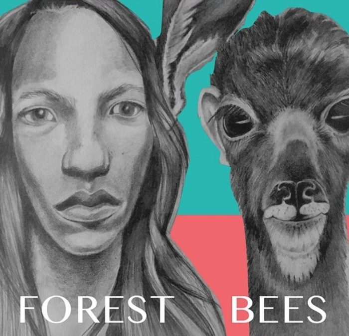 forest bees, forest bees