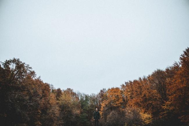 november rain | best new music releases of november 2019