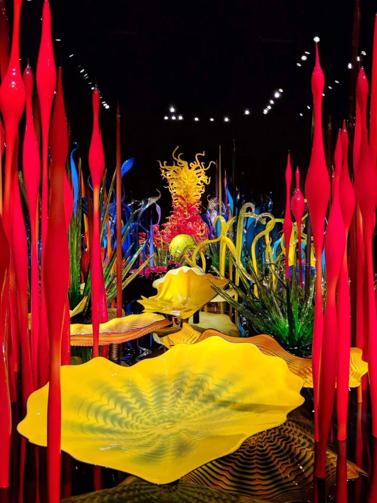 Time required to visit chihuly garden and glass: Why You Should Visit Chihuly Garden And Glass At Night