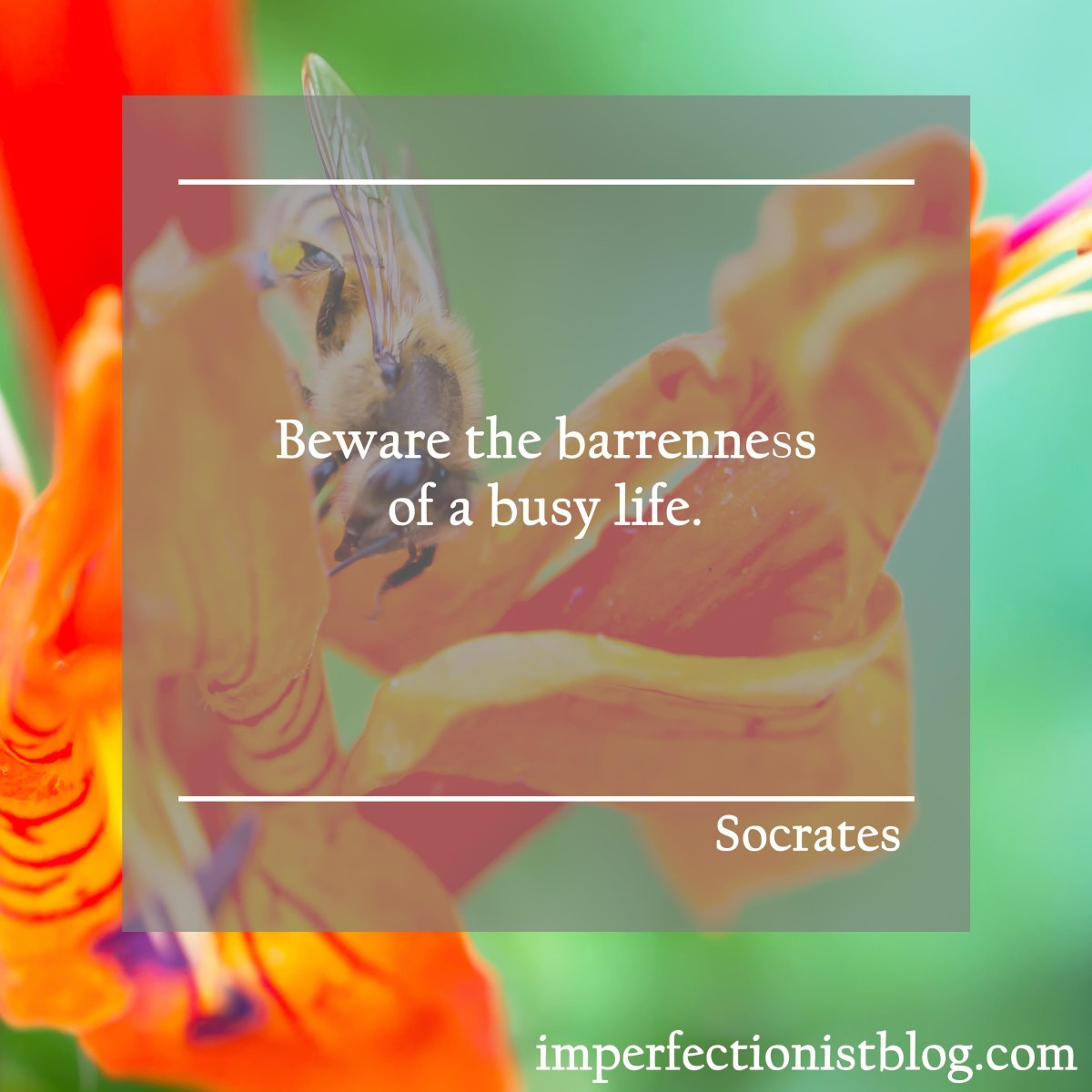 """Beware the Barrenness of a Busy Life"""