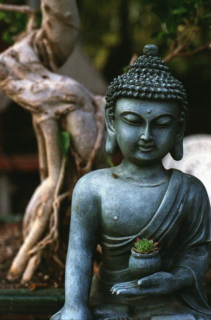 Bonsai aesthetic values