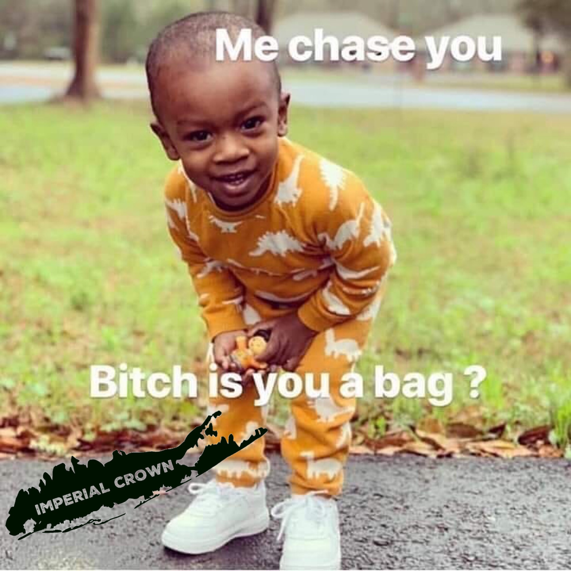 bitch is you a bag?