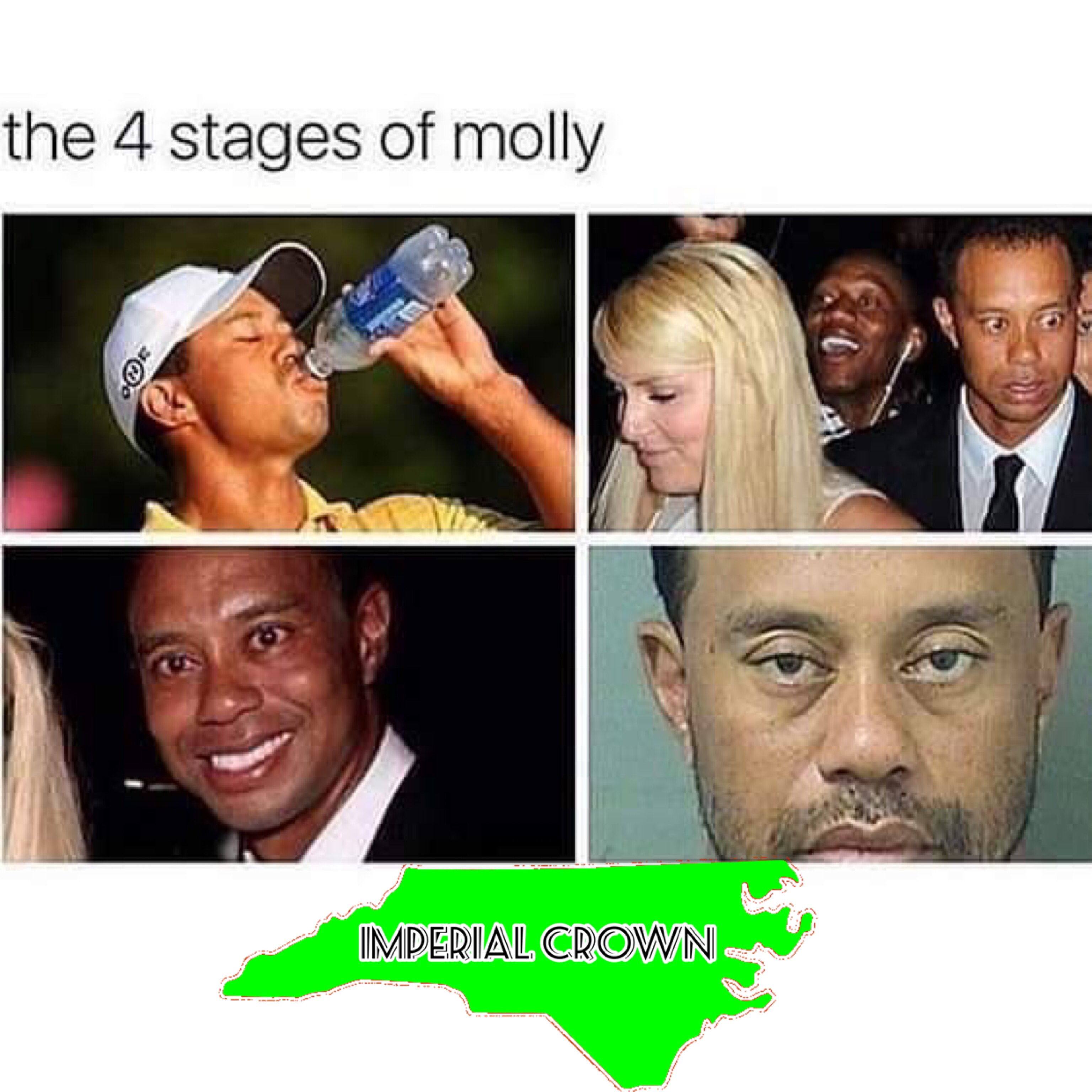 The 4 stages of molly…