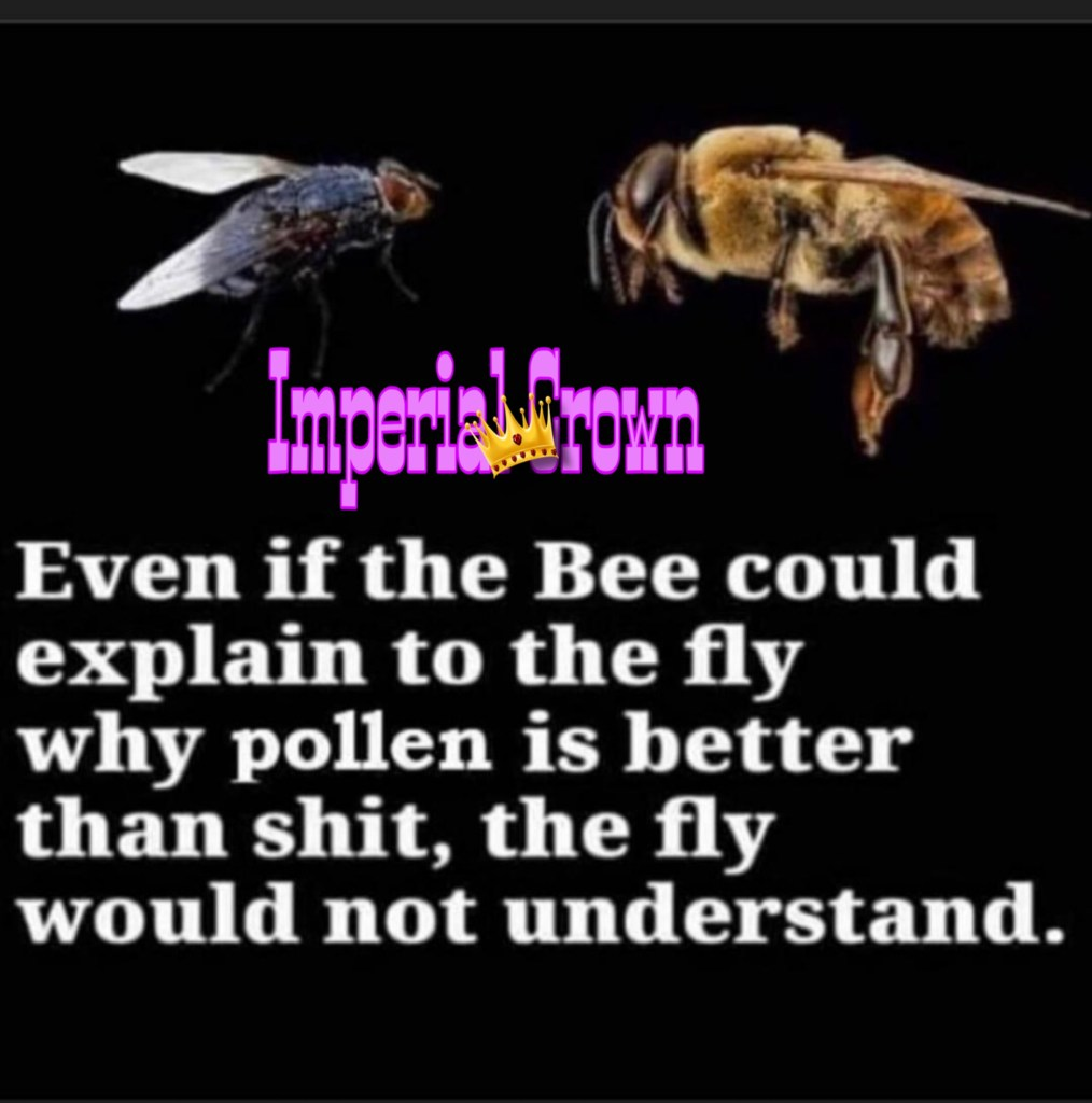 Even if the bee could explain to the fly why pollen is better than shit, the fly would not understand