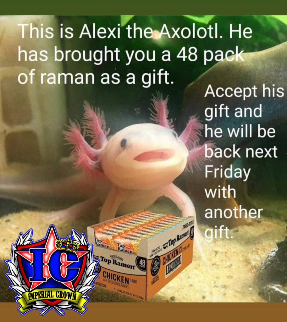 This is Alexi the Axolotl he has brought you a 48 pack of ramen as a gift