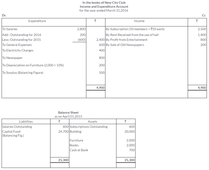 ts-grewal-solutions-class-11-accountancy-chapter-20-financial-statements-of-not-for-profit-organisations-39-2