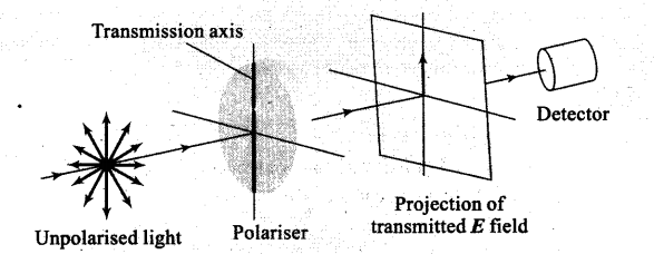 ncert-exemplar-problems-class-12-physics-wave-optics-4