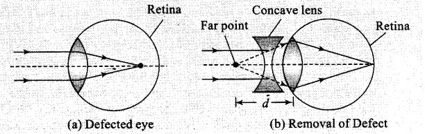 ncert-exemplar-problems-class-12-physics-ray-optics-and-optical-instruments-12