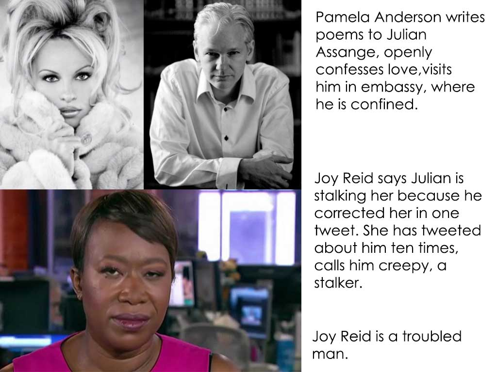 Thousands of Male Models Mass Suicide Over Rumors of Joy Reid Marriage, Assange on Suicide Watch