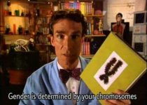 Back when Bill Nye the Science Guy was still sane.