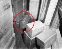 "According to the Warren Report t, there was a single fingerprint lifted from the carton designated ""A"" in the ""sniper's nest"" which could not be linked with Oswald, any other employee of the Texas School Book Depository, or any law enforcement officer that had handled the carton. The fingerprint remains in the National Archives, labeled ""Unknown."""