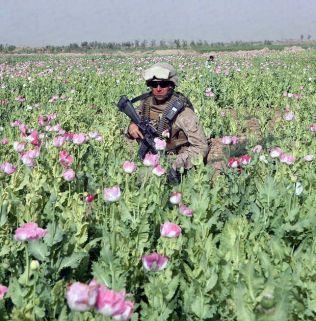 USMarines protecting CIA poppy fields inAfghanistanin 2017