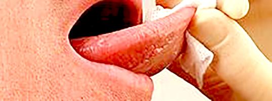 ultrahang randevú a terhesség első trimeszterében randevú profilok írása srácok