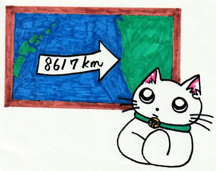ションタの受付日記 『震災から8年だけど』