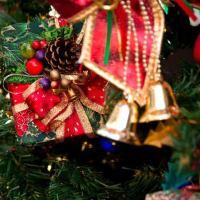 ◇◆◇クリスマスイベント◇◆◇