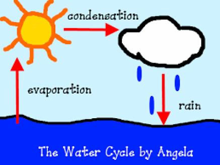 h2o cycle