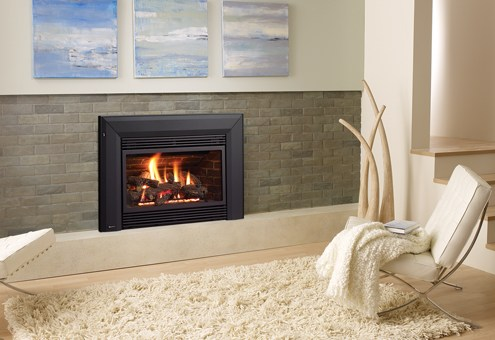 Regency Energy™ E33 Large Gas Insert