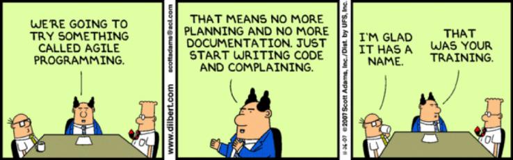 What is Agile Programming? (Comics)