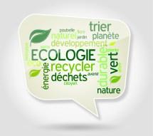 Bulle : écologie