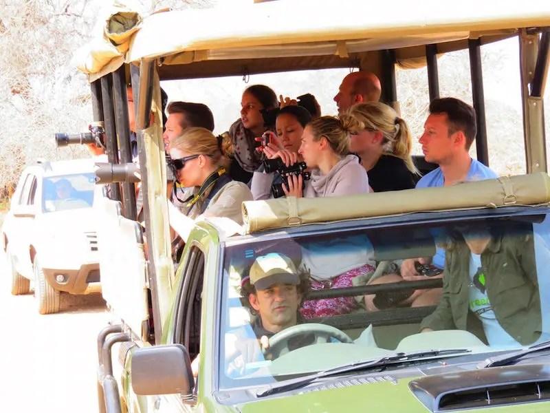 Krüger Nationalpark: offener Safariwagen