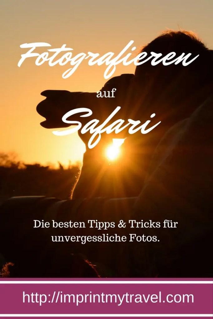 Fotografieren auf Safari- meine besten Tipps und Tricks