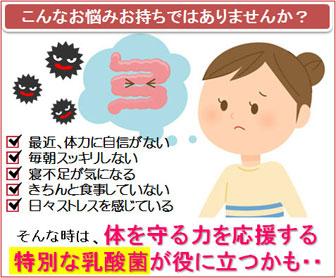 腸内環境を整えて免疫力を高めよう│乳酸菌サプリメント「メガサンA150」</
