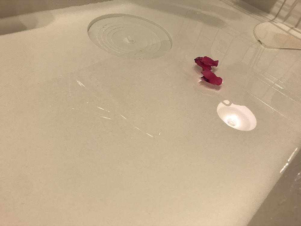 シンクに汎用蓋を置いたらちゃんと水がたまった