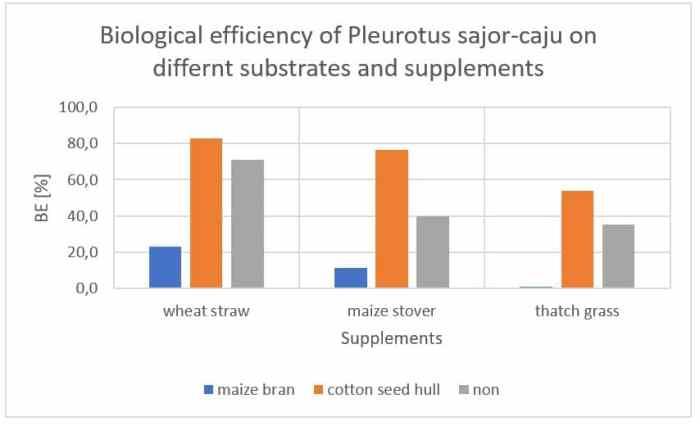 Figure 43: Interaction among supplements and substrates on BE of Pleurotus sajor-caju.