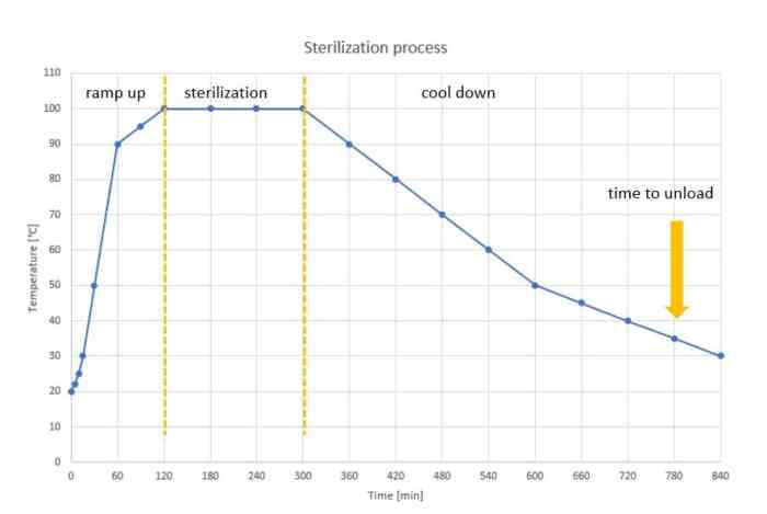 Figure 1: Example of a sterilization process