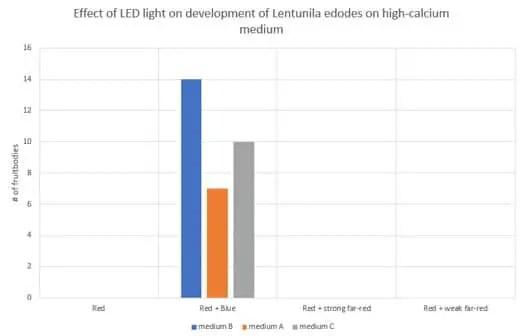 Effect of LED light on development of Lentunila edodes on high-calcium medium