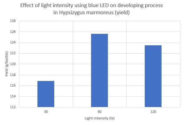 Effect of light intensity using blue LED on developing process in Hypsizygus marmoreus