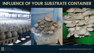 Influence of your substrate container