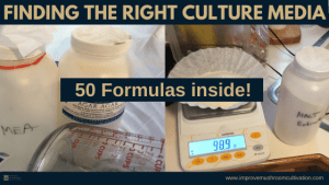 Finding the right culture media