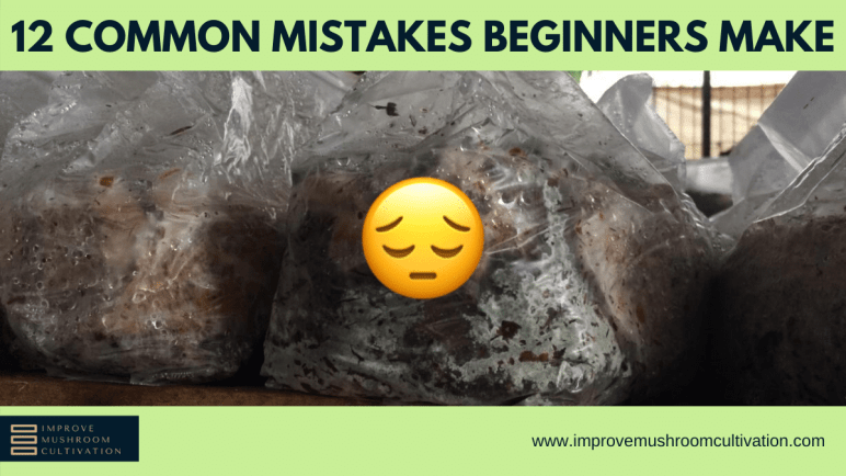 12 common mistakes beginner mushroom farmers make