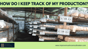 How do I keep track of my production?