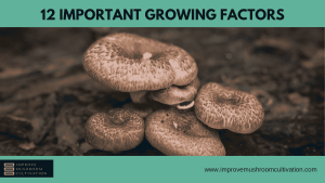 12 Important Growing Factors