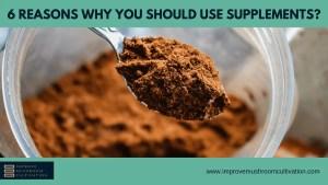 6 Reasons for Supplements in Mushroom farming