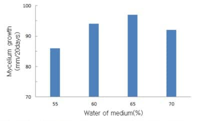 The effects of the moisture content of the culture medium on mycelium growth of Flammulina velutipes